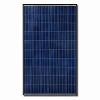 Canadian Solar CS6P-260P-PT Black Solar Panel Pallet